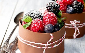 Picture berries, raspberry, Bush, food, chocolate, strawberry, sweets, fruit, dessert, glaze