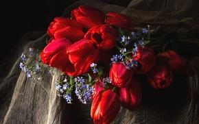 Picture bouquet, tulips, forget-me-nots