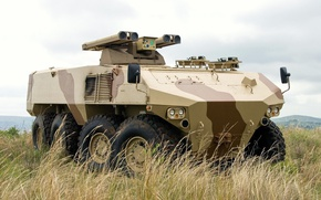 Wallpaper 8x8, war material, camouflage, RG41 8x8 Wheeled Armoured Combat Vehicle, BAE RG41, payload capacity of ...