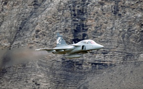 Picture You can, JAS 39 Gripen, Swedish multi-role fighter fourth generation