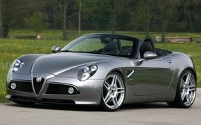 Picture grey, spider, supercar, alfa romeo, the front, spider, Alfa Romeo, tuning.tuning, trees.background, novitec, disks.grass