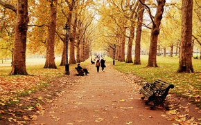 Wallpaper autumn, leaves, trees, landscape, bench, nature, children, people, people, track, girl, walk, falling leaves, path, ...