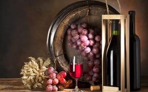 Wallpaper table, box, wine, glass, bottle, grapes, bunch, barrel
