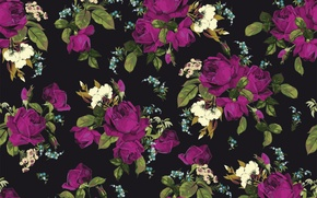 Picture flowers, background, roses, texture, rose, print, pattern, floral