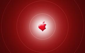 Wallpaper Apple, brand, heart, apple, Wallpaper, logo