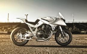 Picture Suzuki, bike, Katana, 1982, castom, Icon1000, 82', NewJack