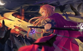 Picture the sky, girl, night, weapons, a month, anime, art, bats, pixiv fantasia, tsubasa19900920