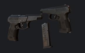 Picture gun, ATP, СР1М
