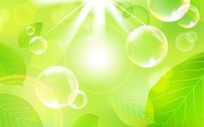 Wallpaper leaves, rays, light, bubbles, the volume