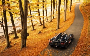 Picture background, rear view, Agera, Agera, supercar, hypercar, Koenigsegg, Koenigsegg, autumn
