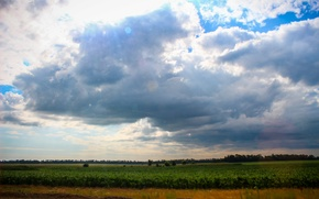 Picture field, summer, clouds, the steppe, Nature