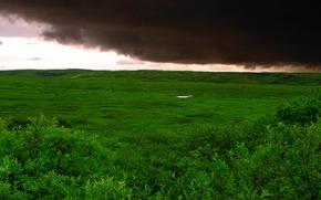 Wallpaper storm, grass, Green, field, clouds