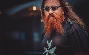 Picture portrait, glasses, male, beard