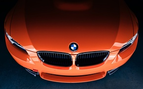 Picture label, Lime Rock Park Edition, E92, BMW, the hood, front, orange, orange, grille, BMW, icon