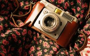 Picture camera, the camera, fabric