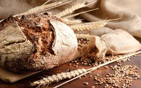 Picture wheat, grain, spikelets, bread, rye