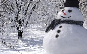 Picture snowman, Christmas, winter, snow, snowman