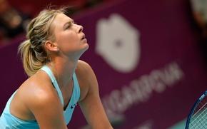 Picture tennis player, Maria Sharapova, Tennis Girl