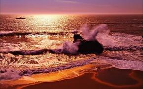 Picture sea, wave, shore