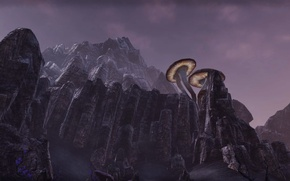Picture landscape, rocks, mushrooms, view, rocks, the elder scrolls, mushrooms, The Elder Scroll Online, TESO, The …