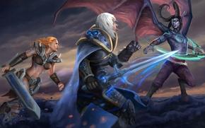 Picture Lich King, Sonya, diablo, Arthas, warcraft, barbarian, Heroes of the Storm, illidan stormrage, Wandering Barbarian