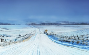Picture winter, road, the sky, grass, snow, landscape, nature, sign, focus, grass, road, sky, landscape, nature, …