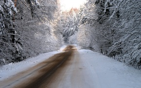 Wallpaper snow, nature, winter, road, trees, photos, road, forest