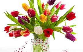 Picture bouquet, tape, tulips, vase