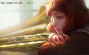 Wallpaper hibike! euphonium, look, art, face, profile, anime, oop, uma kumiko, girl