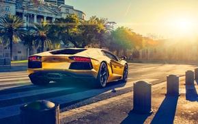 Picture Lamborghini, Sun, Color, Sunset, LP700-4, Aventador, Back, Supercar, Gold