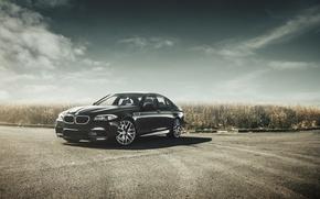 Picture BMW, BMW, black, black, f10