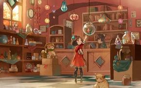 Picture cat, toys, watch, books, aquarium, fish, piggy, girl, banks, hat, bag, lanterns, shop, seller, suspension