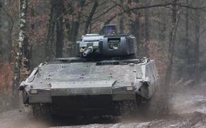 Picture trees, dirt, Puma, war machine, German