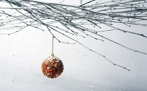 Picture snow, new year, branch, Christmas ball