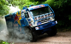 Wallpaper Jungle, Rally, Forest, Dirt, Road, Rally-marathon, KAMAZ, Dakar, KAMAZ-master, Dakar, KAMAZ Master Team, Vladimir Chagin