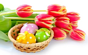 Picture eggs, Easter, tulips, spring, Easter