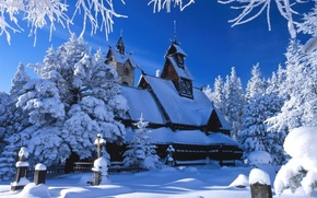 Picture winter, white, snow, ice