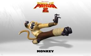 Picture monkey, weapon, kung Fu, Kung fu Panda, kung Fu Panda 2