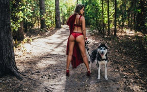 Wallpaper forest, ass, trees, panties, dog, figure, dress, brunette, hairstyle, shoes, leash, walk, in red, bra, ...