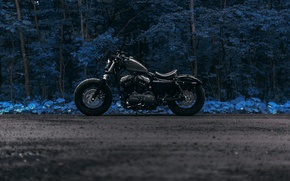 Picture road, forest, Harley Forty Eight