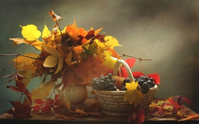 Wallpaper leaves, autumn, grapes, apples, still life