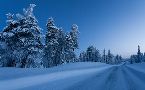 Picture Nature, Winter, Road, Trees, Snow, Finland