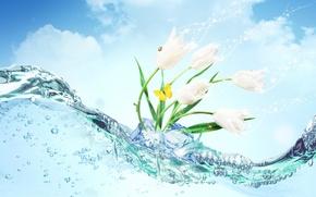 Wallpaper ice, water, flowers, butterfly