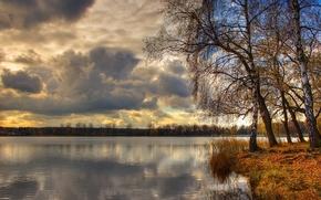 Wallpaper trees, lake, clouds, birch