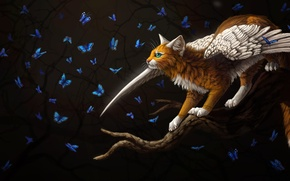 Picture butterfly, fantasy, winged cat, by Cat-Patrisiya