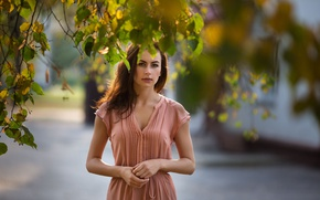 Picture autumn, look, leaves, girl, sweetheart, model, portrait, dress, pink, beautiful, the beauty, chic, nice, inspiration, …
