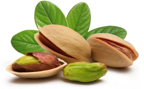 Wallpaper leaves, nuts, pistachios