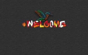 Picture kalibri, welcome, hashtag
