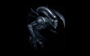 Picture art, Stranger, Alien, art, Xenomorph, Xenomorph