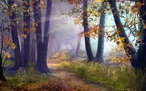 Picture autumn, forest, art, autumn